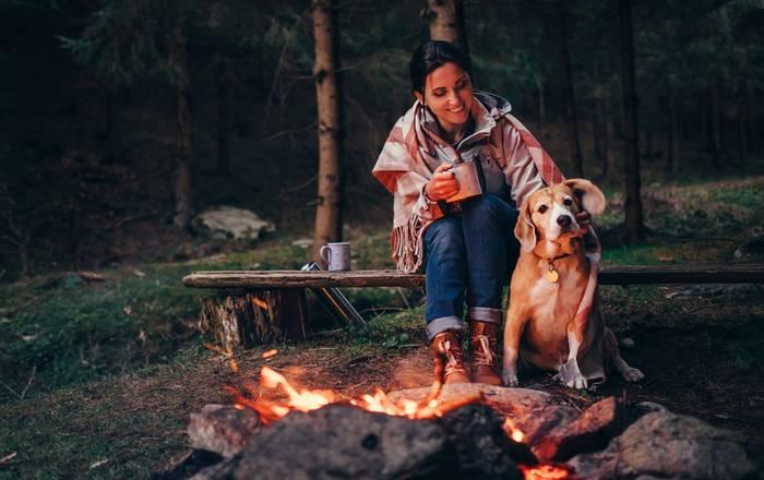 Jeder Campingplatz wird dem Vierbeiner gefallen. (Foto: shutterstock - Soloviova Liudmyla)
